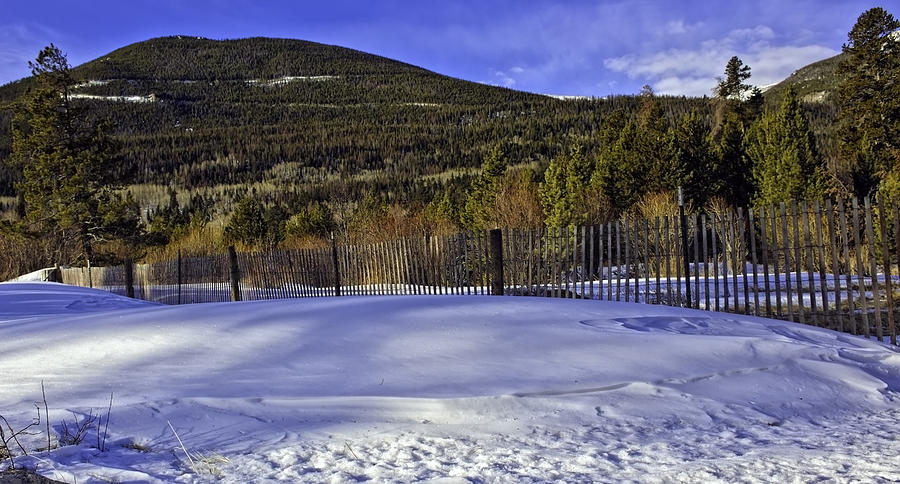 Rockies Photograph - Snow Fence Fall River Road by Tom Wilbert