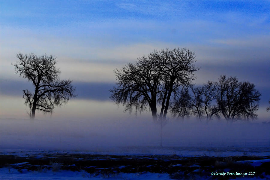 Colorado Born Images Photograph - Snow Fog by Rebecca Adams