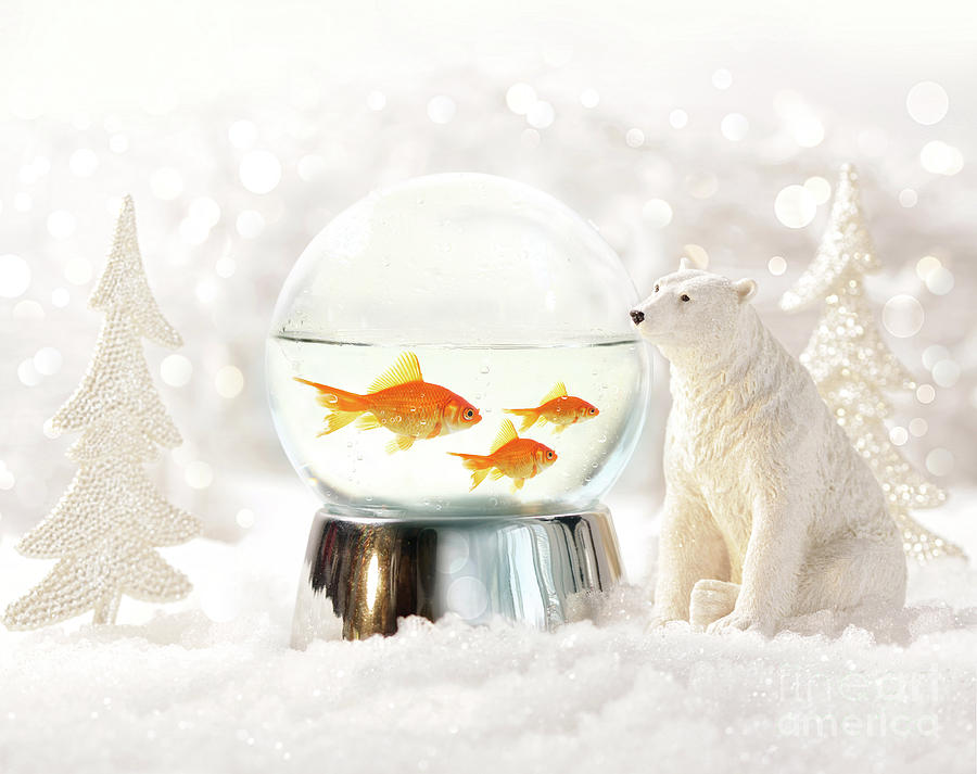 Background Photograph - Snow Globe In  Winter Scene by Sandra Cunningham