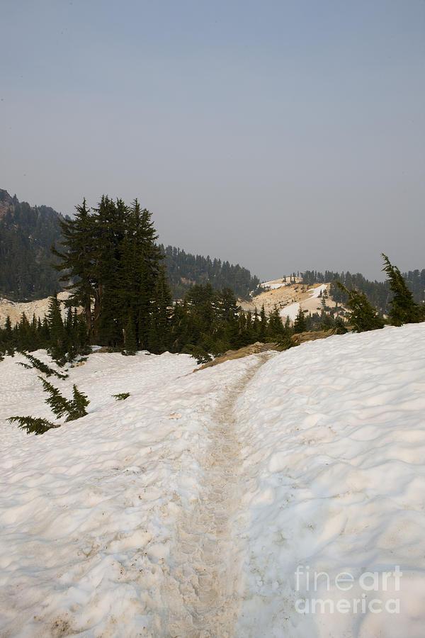 Snow Hiking Path Lassen Volcanic National Park Photograph