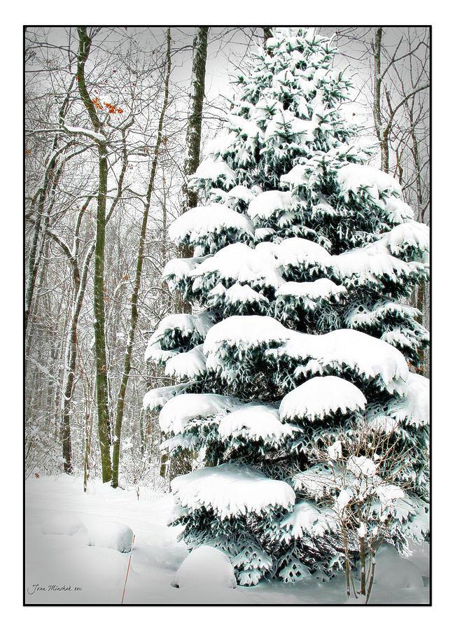 Accumulation Digital Art - Snow In Ohio by Joan  Minchak