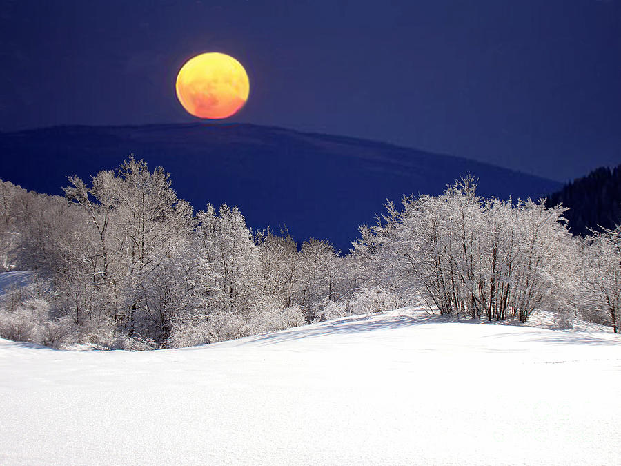 Snow Photograph - Snow In The Moonlight 01 by Giorgio Darrigo