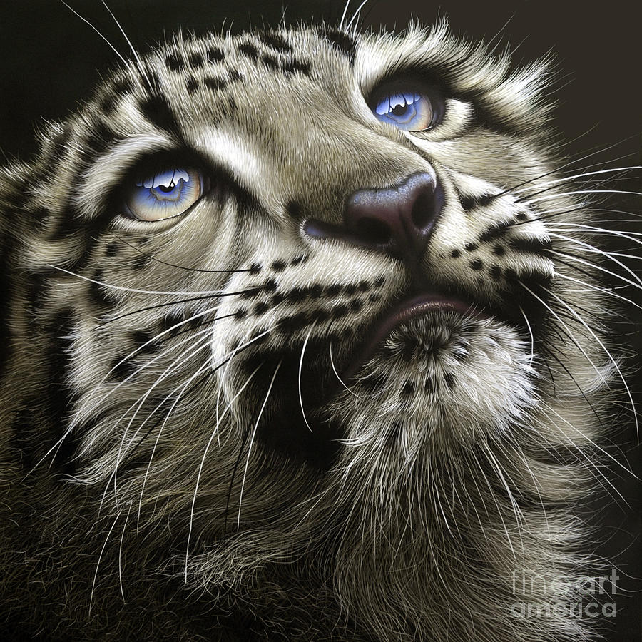 Snow Leopard Cub Painting - Snow Leopard Cub by Jurek Zamoyski