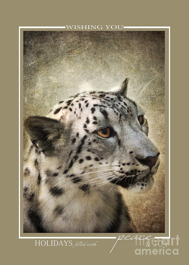 Snow Leopard Wildlife Christmas Cards Photograph by Jai Johnson