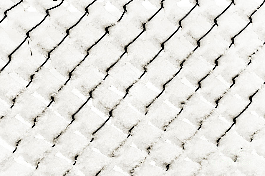 Chain Link Fence Photograph - Snow Link Fence by Andee Design