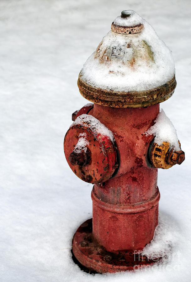 Snow On The Hydrant Photograph - Snow On The Hydrant by John Rizzuto