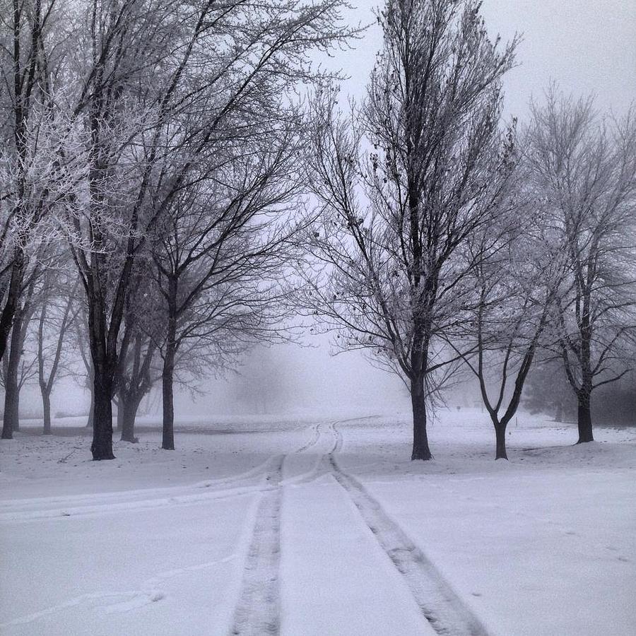 Uncategorized Enjolie path photograph by enjolie bostic snow bostic