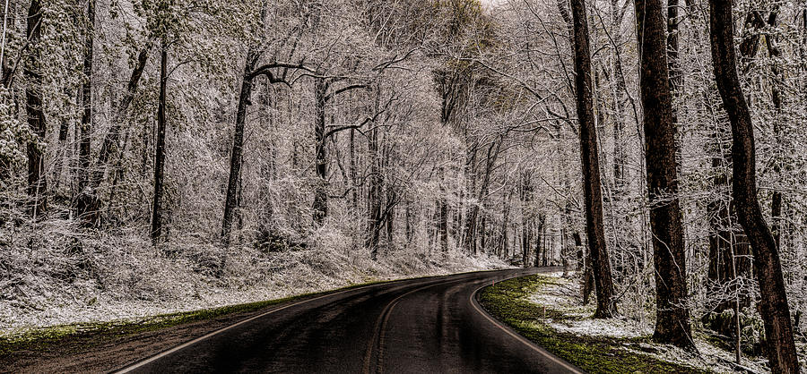 Snow Photograph - Snow Road by Tom  Reed