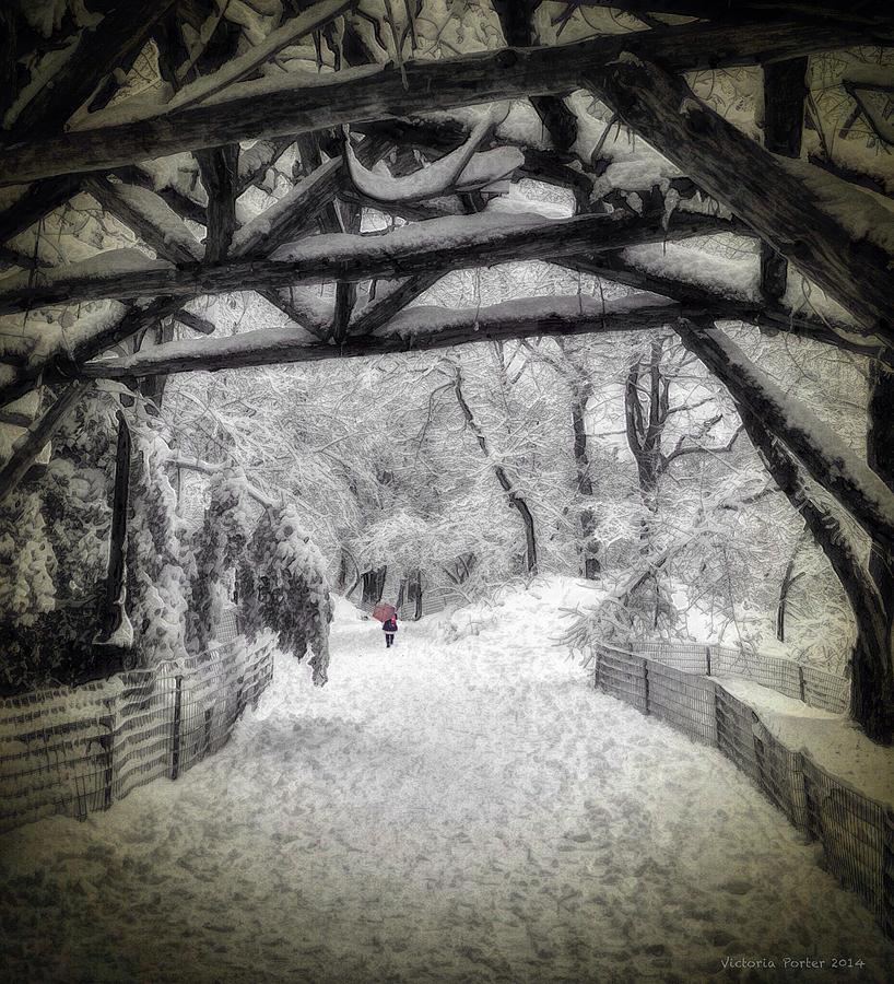 Snow Scene in Central Park by Victoria Porter