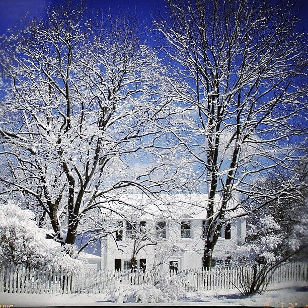 Beautiful Photograph - #snow #winter #house #home #trees #tree by Jill Battaglia