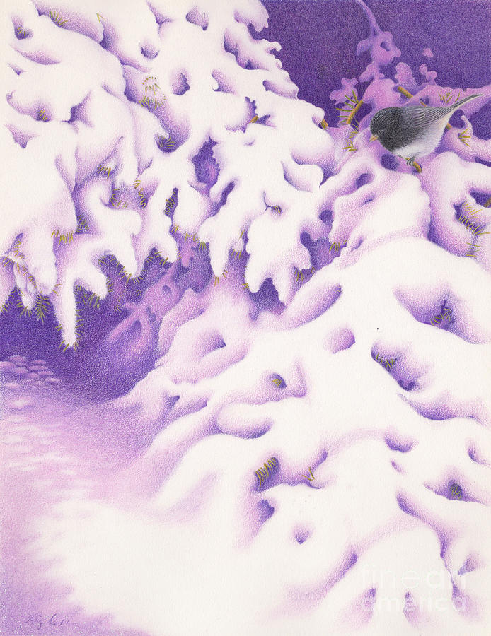 Winter Painting - Snowbird by Elizabeth Dobbs