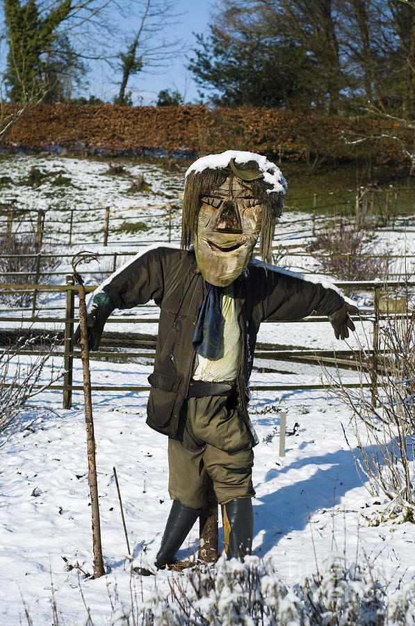 Capped Photograph - Snowcapped Scarecrow by Anne Gilbert