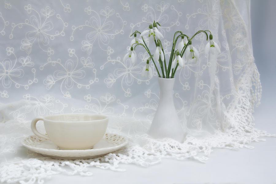 Snowdrop Photograph - Snowdrops At Teatime by Ann Garrett