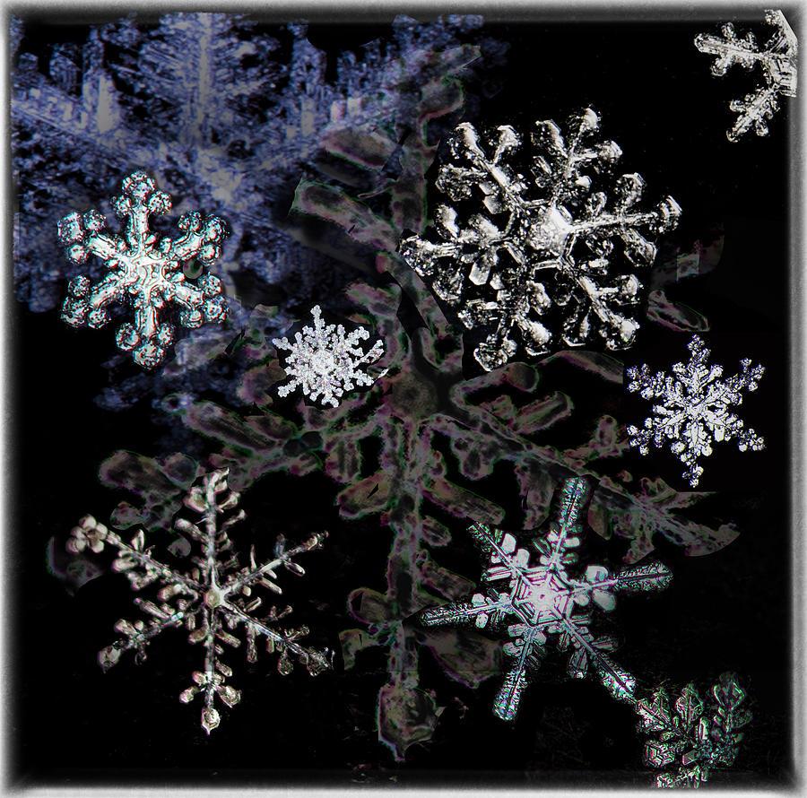 snowflake collage by Bobbie Turner