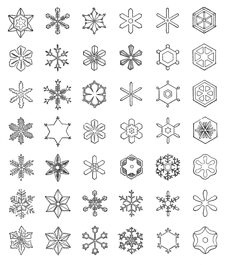Snowflake Patterns Photograph By Science Photo Library Delectable Snowflake Patterns