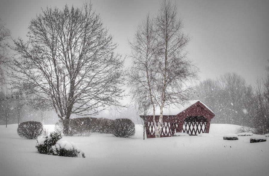 Snow Photograph - Snowing Again by Diana Nault