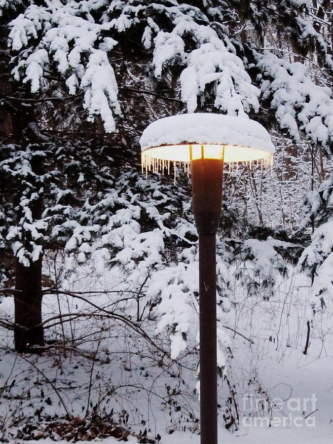 Snow Photograph - Snowlight by Avis  Noelle