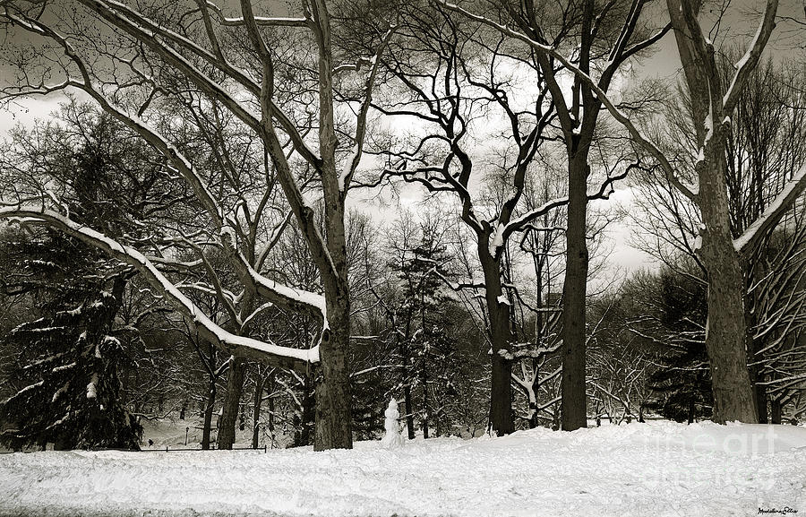 Snowman Photograph - Snowman by Madeline Ellis