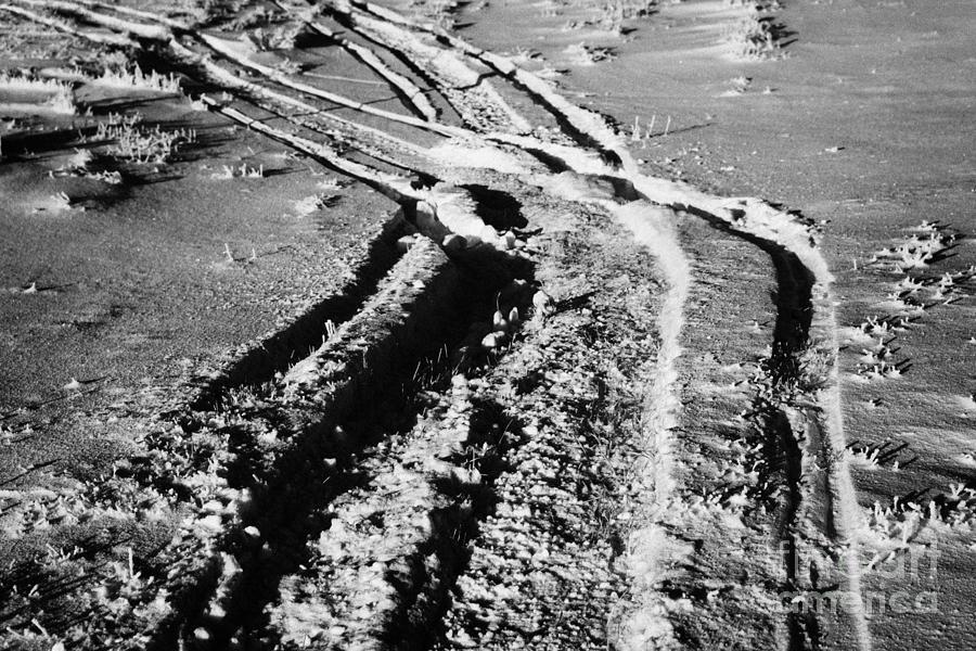Snowmobile Photograph - snowmobile tracks in snow across frozen field Canada by Joe Fox