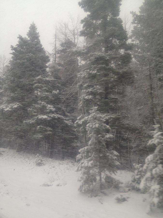 Snow Photograph - Snowscape Taos by Bobbi Bennett