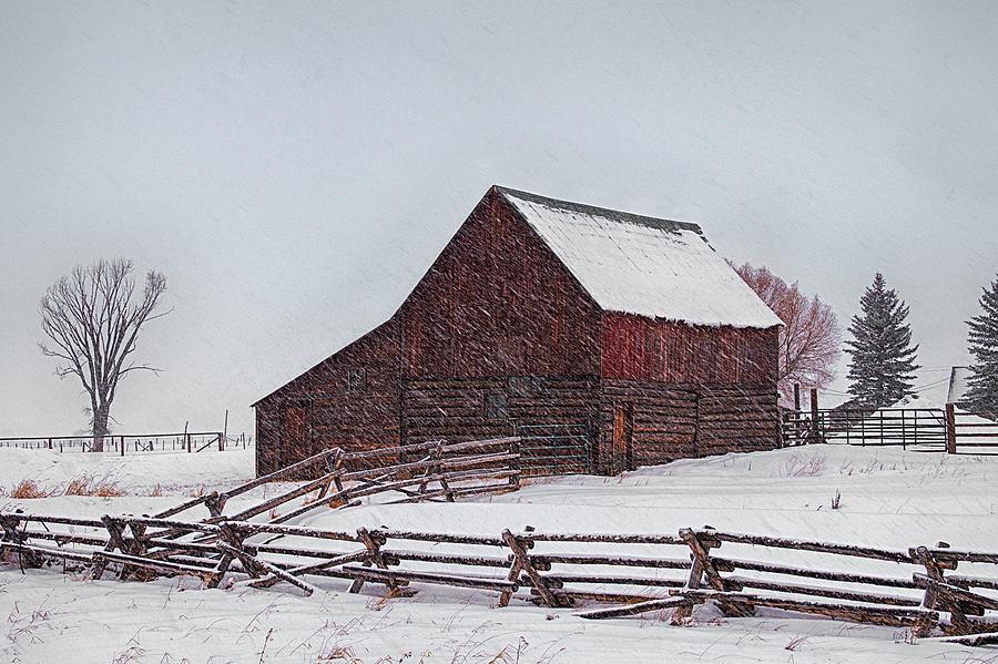Snowstorm At The Ranch Photograph