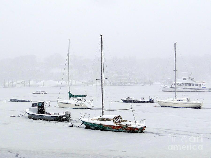 Harbor Photograph - Snowstorm On Harbor by Ed Weidman