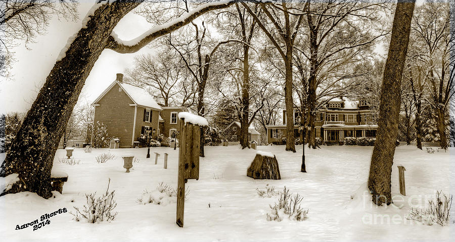 Snow Photograph - Snowy Afternoon by Aaron  Shortt