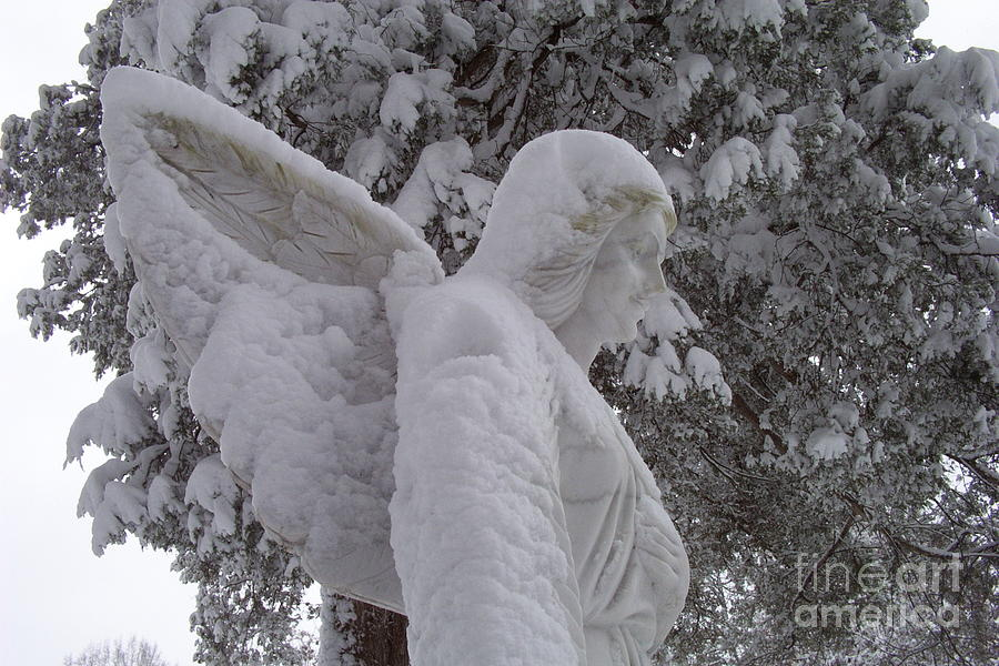 Angel Photograph - Snowy Angel by Kevin Croitz