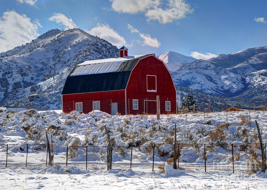 Snowy Barn In The Mountains