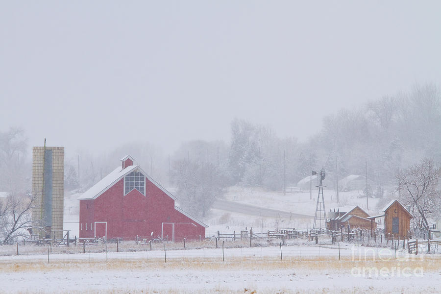 Snowy Country Winter Day Photograph