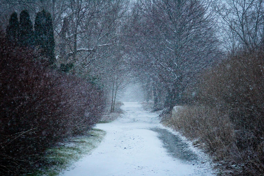 Snow Falling Photograph - Snowy Day In Newport by Allan Millora