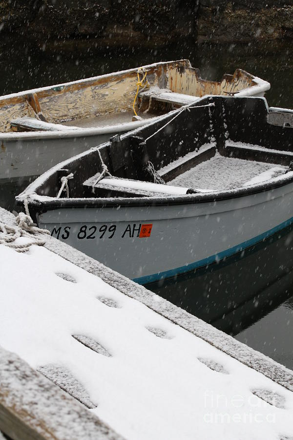 Snowy Dock and Dinghies 012813 by Gene  Marchand