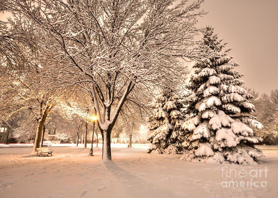 Winona Photograph - Snowy Night At Windom Park by Kari Yearous