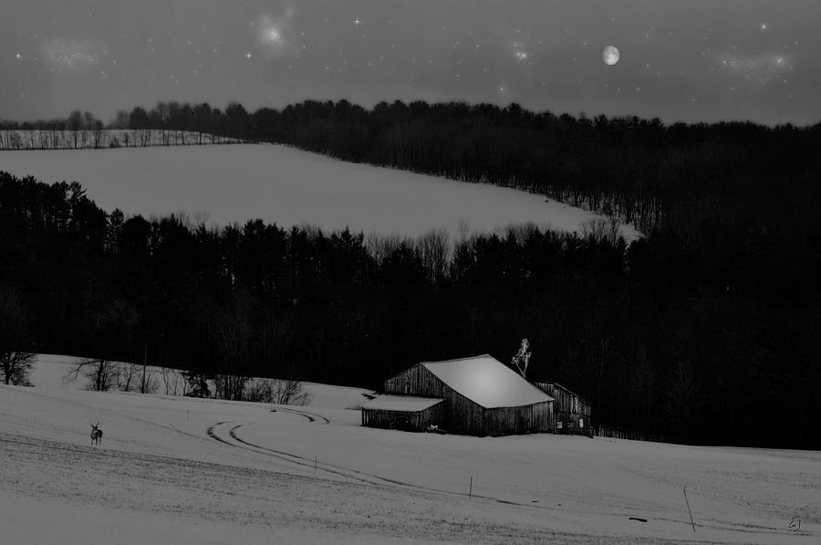 Black And White Photograph - Snowy Night by Emily Stauring