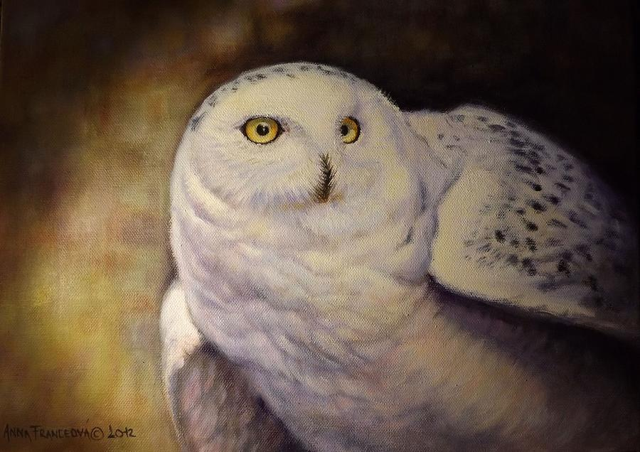 Owl Painting - Snowy owl by Anna Franceova