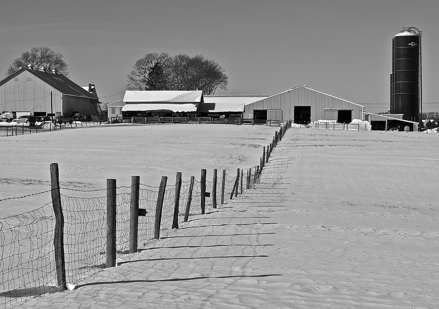 Snow Photograph - Snowy Pastoral Scene  At The Sheep Farm by Thomas Camp