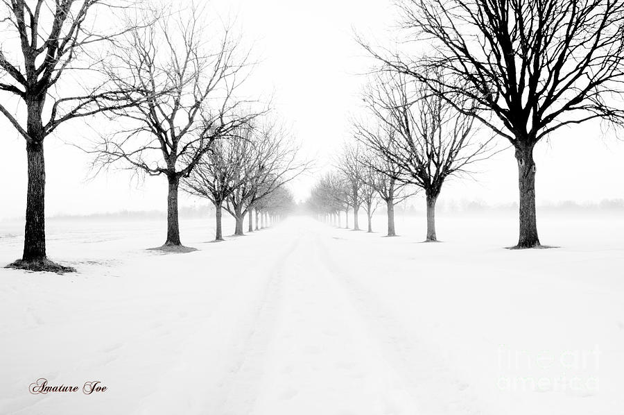 Landscape Photograph - Snowy Path by Joe Russell