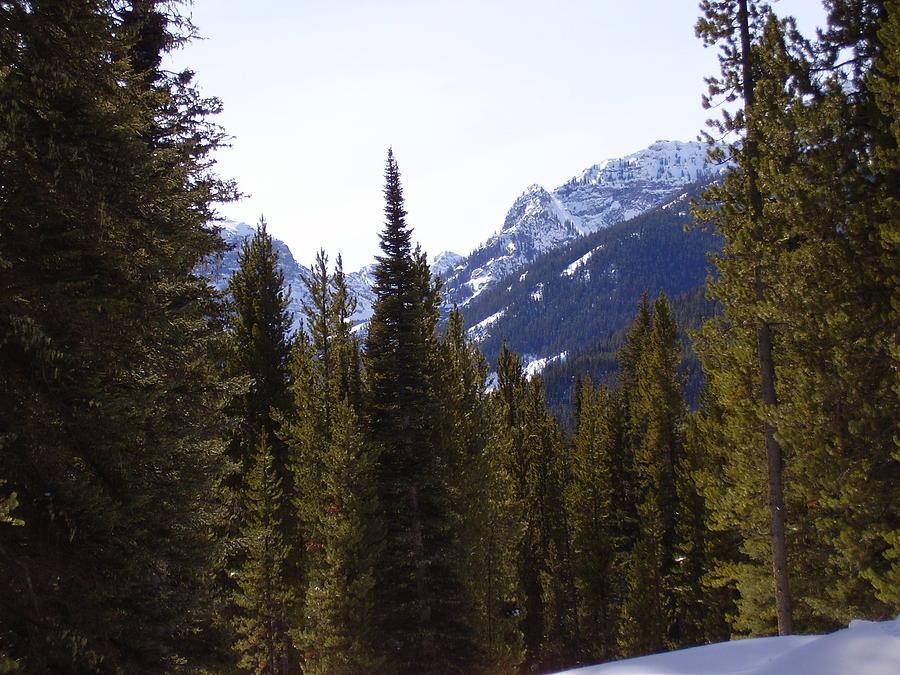 Landscape Photograph - Snowy Peaks by Yvette Pichette