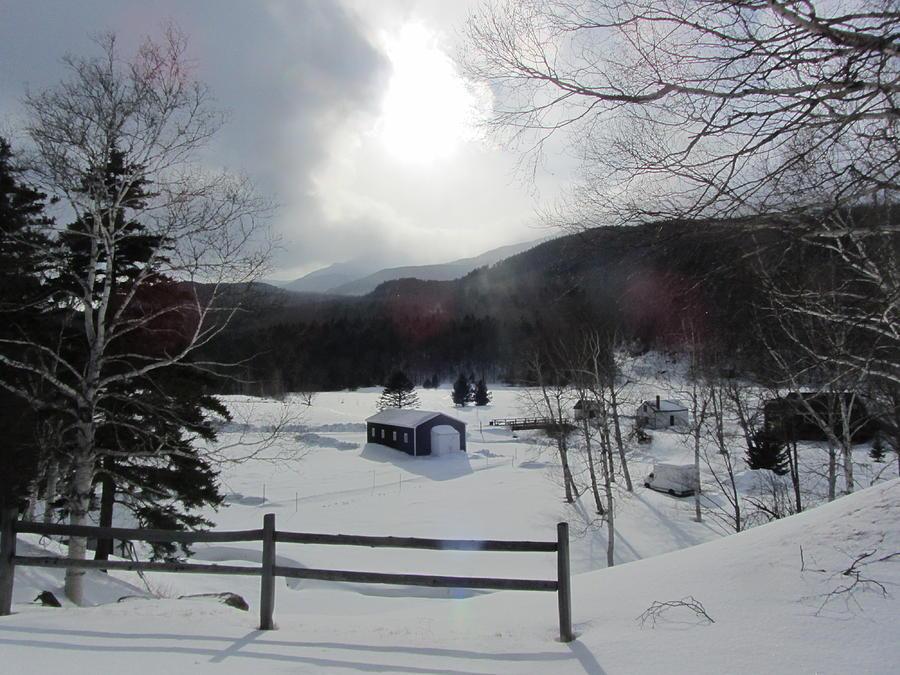 Snow Photograph - Winter Light by Deborah Flusberg