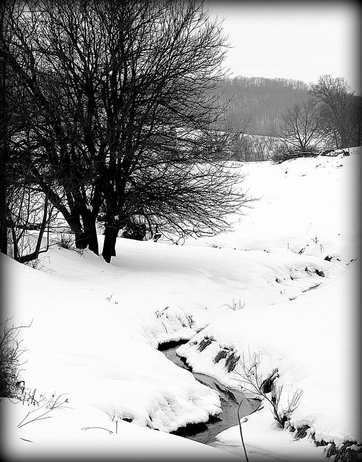 Black And White Photograph - Snowy Stream by Alexandra  Rampolla