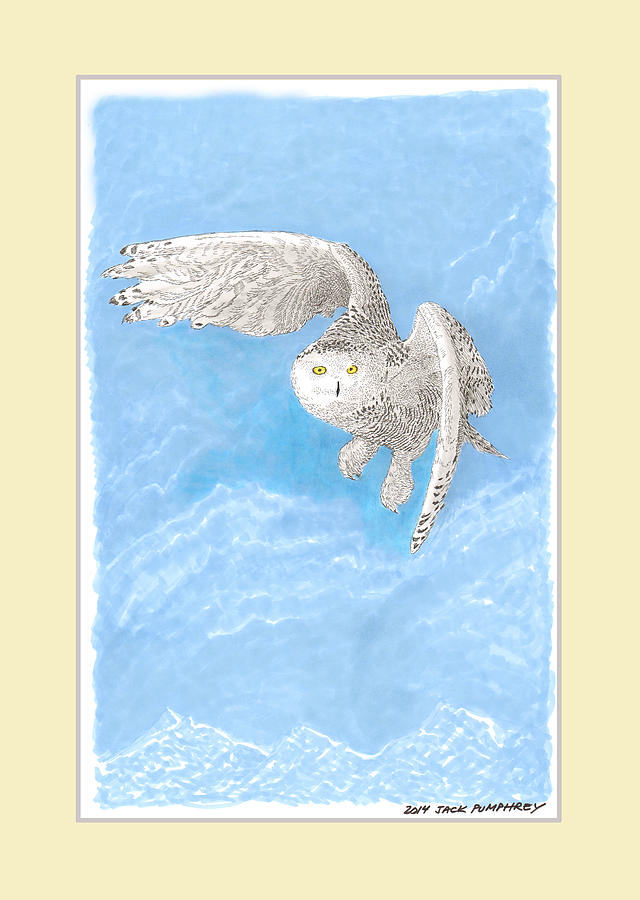 Snowy White Owl Art Painting