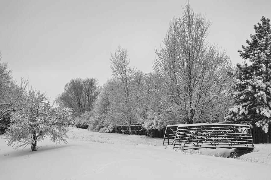 Snowy Winter Landscape View Bw Photograph