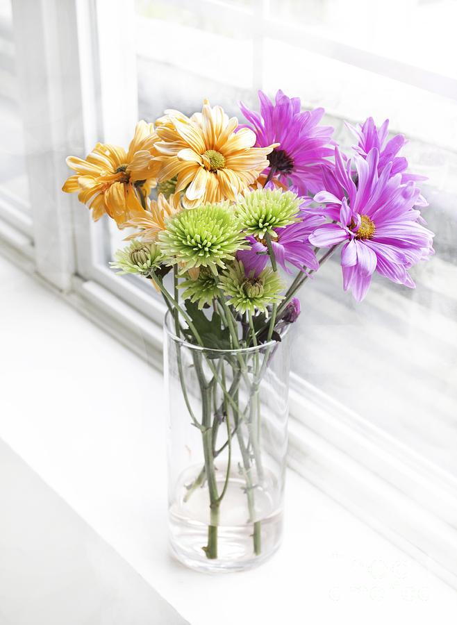 Flower Photograph - So Bright by Arlene Carmel