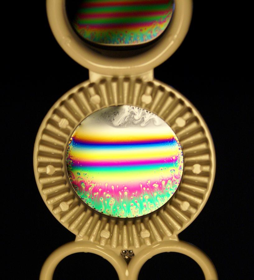 Soap Photograph - Soap Bubbles by Niki Mastromonaco