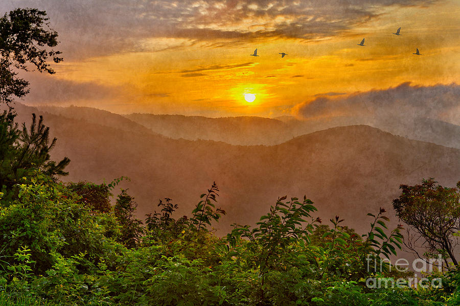 Blue Ridge Parkway Photograph - Soaring At Sunrise - Blue Ridge Parkway II by Dan Carmichael