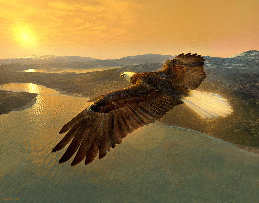 Eagle Digital Art - Soaring Eagle by Ray Downing