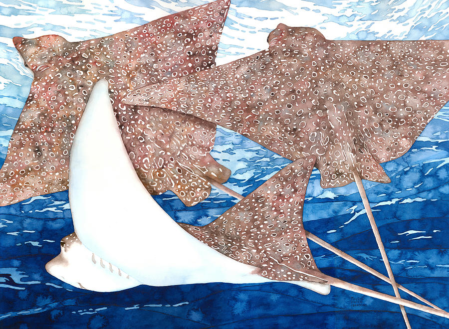 Spotted Eagle Ray Painting - Soaring Eagle Rays by Pauline Walsh Jacobson