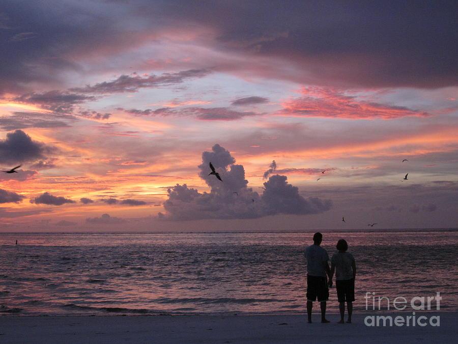 Anna Maria Island Photograph - Soaring by Elizabeth Carr