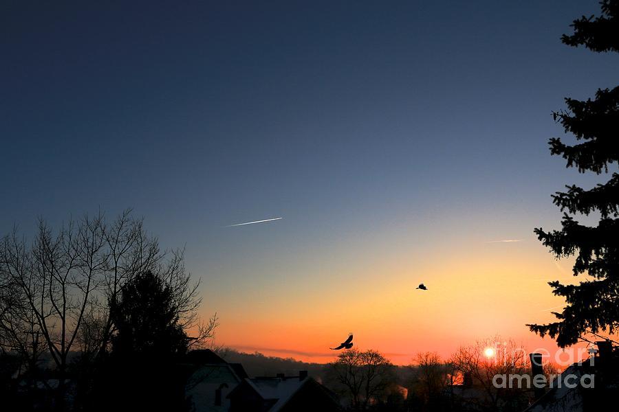 Sunrise Photograph - Soaring Sunrise 2 by Jay Nodianos