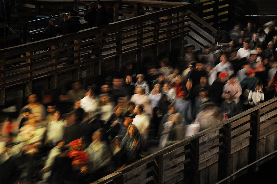 Pier 39 Photograph - Social Currents by Scott Lenhart